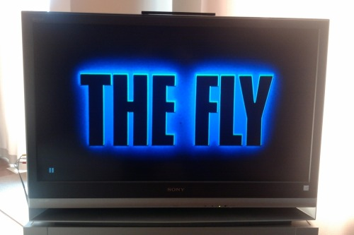 Halloween Hype 2011, Pt. XVII The Fly [1986 / David Cronenberg / *****] The remaining Hype entries were all view during a marathon o' horror that took place all Halloween day and night.