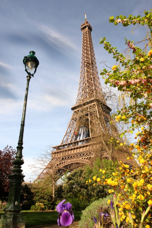 Paris, France. It may be cliche, but Paris really is the most romantic city. A picnic with baguettes, cheese and grapes right there would make any afternoon better.
