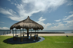 Shade (Calatagan, Batangas, Philippines) submitted by: tinamaldita, thanks!