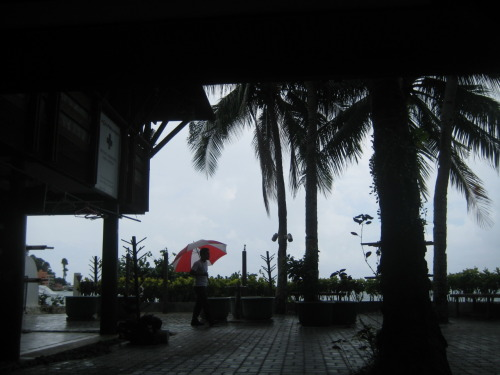 August 3, 2011. Random Red. Anilao, Batangas, #Philippines