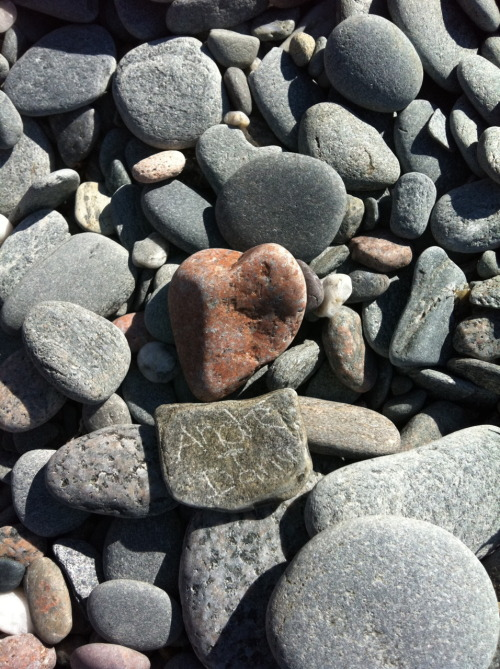 Beach rocks.  Atlantic Ocean Coast.