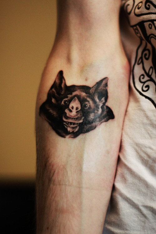 My leaf-nosed bat on my right arm done by the highly recommended Chelsea Naticchi at Hello Sailor Tattoo studio in Blackpool.http://thegoatandthehoe.tumblr.com