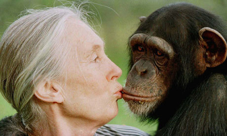"I was hanging out with Jane Goodall. Her pussy was so wet I felt like a gorilla in the mist.   Edwin ""King of Kong"" Li @ San Francisco Punch Line [Paraphrase]"
