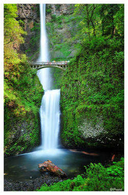 Multnomah Falls, Oregon