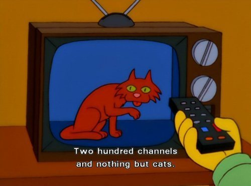 thelibraryisfree:  What I feel like when I try to watch TV.