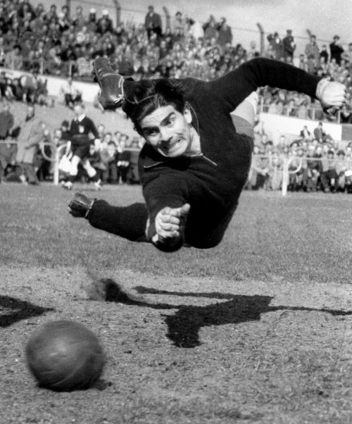 Dutch football goalkeeper Frans de Munck, known as 'the black panther'. Photo: Jaap J. Herschel (Netherlands). World Press Photo 1957, Sports, 2nd prize