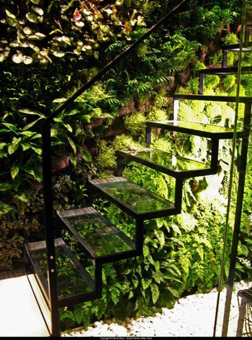 "Glass stairs take on a ""green"" appearance due to an abundance of plants (via Des escaliers comme s'il en pleuvait !)"