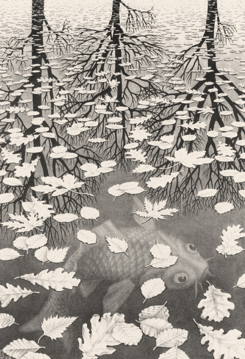 secousses:  M.C. Escher