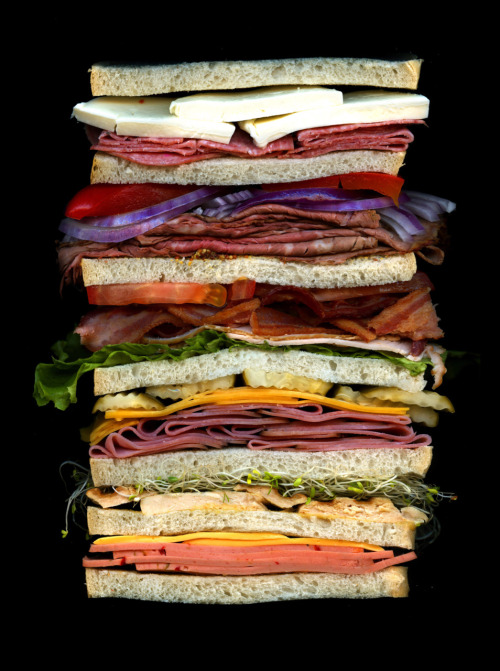 scanwiches:  Happy Sandwich Day!!! Celebrate with a sandwich (or by ordering a sweet book about them). Featured Scanwich: A Dagwood from the Scanwiches Book.