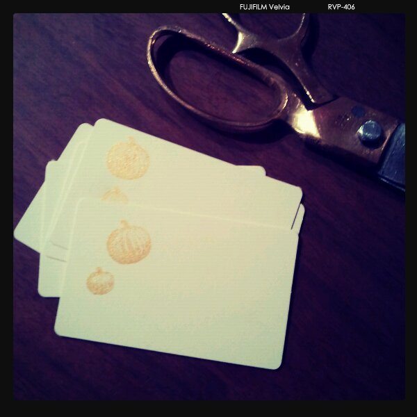 Every order will be accompanied by a hand stamped enclosure card! Can accomodate brief gift message, too.