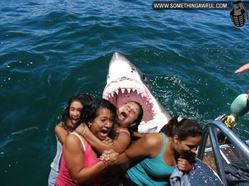 (via Hilariously Frightened People Get Photoshopped - My Modern Metropolis)
