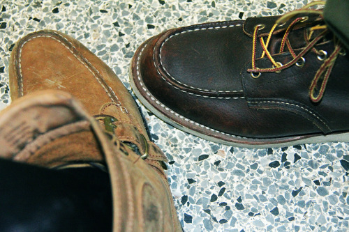 My Polo Rangers and @ILLIONAIRE's Redwings.