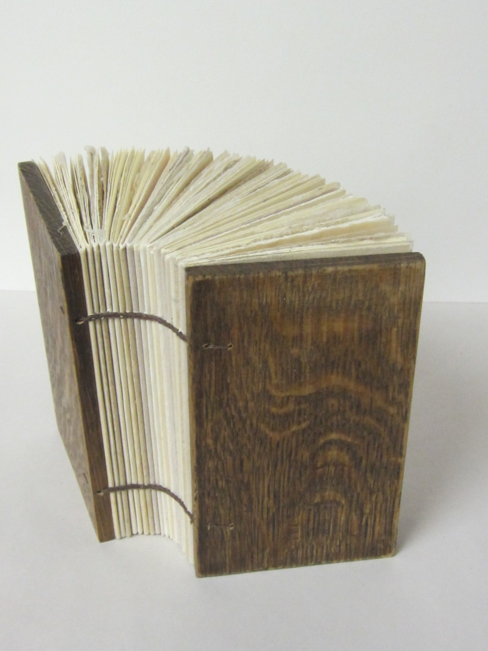cpfffr:  Blank coptic book with stained wood covers and various handmade papers. 2011 (Advanced Book Arts)