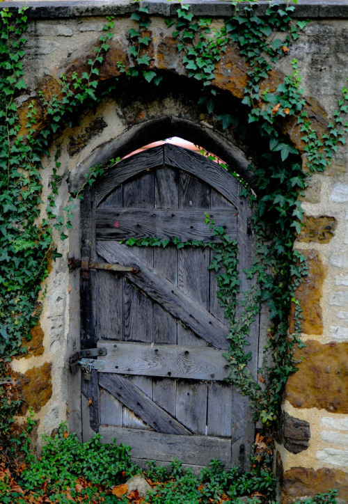 andyouwhisperyouloveme:  Come into the secret garden (By Chris H#)