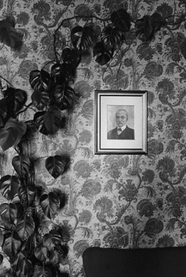 "Climbing Plant and Portrait, Assisi, From ""Eva Rubenstein"" Portfolio   Rubinstein, Eva1979"