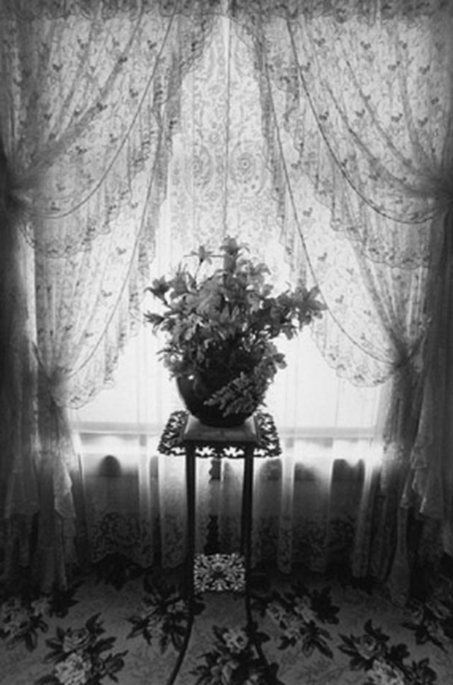 "Silk Flowers, Kalamazoo, From ""Eva Rubenstein"" Portfolio    [+] Rubinstein, Eva1979"
