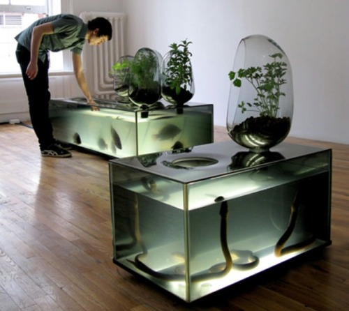 plantsaretakingover:  mildly terrifying but fabulous aquaponics: 'local river' by duende studio / mathieu lehanneur.