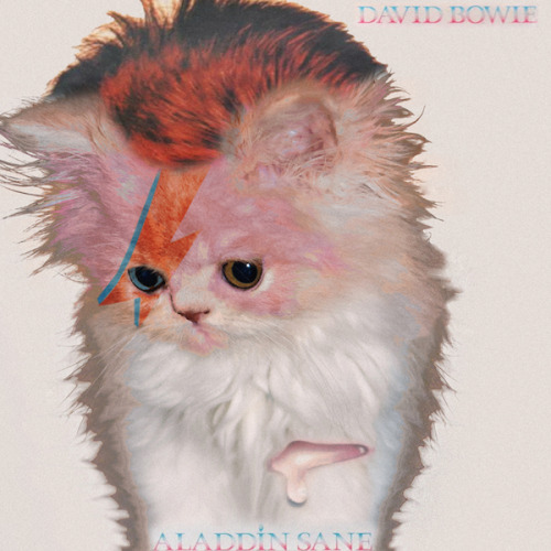David Bowie, Aladdin Sane LP cover parody Source: The Kitten Covers