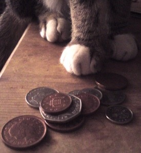 My owner has no job so I can't have kibble. I am the 99 purr cent.