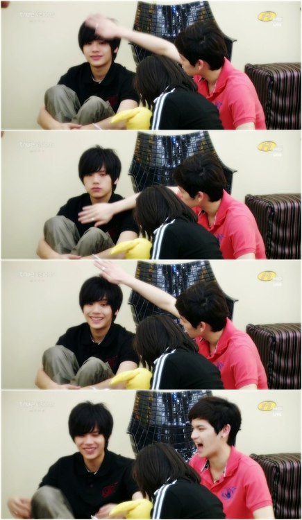 Tao and Kacha