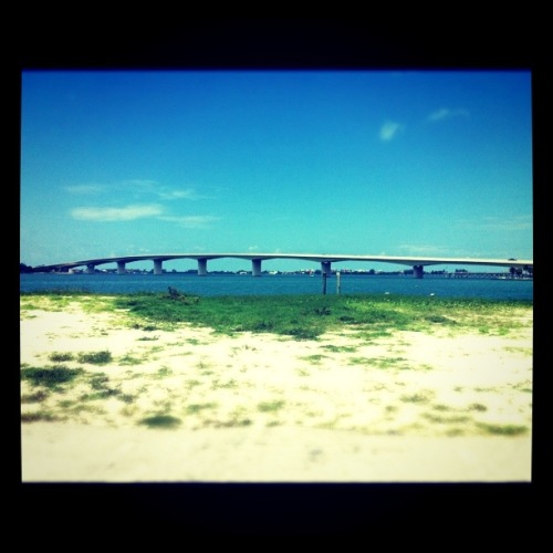 ringling bridge in Sarasota, FL