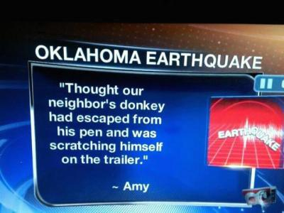 thedailywhat:  Meanwhile, In The Heartland of the Day: Out: Richter scale. In: Donkey-scratching scale. [copyranter.]    This sounds like something I'd say.