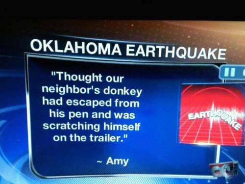 amyvernon:  That's exactly what I thought when we had the 'quake here in NY the other month. via @thedailywhat:  Meanwhile, In The Heartland of the Day: Out: Richter scale. In: Donkey-scratching scale. [copyranter.]