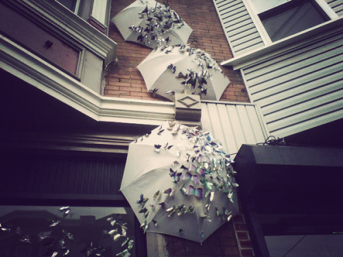 Umbrellas aren't just for rainy days. Taken October 12, 2011 on Fabric Row in Philadelphia Comments