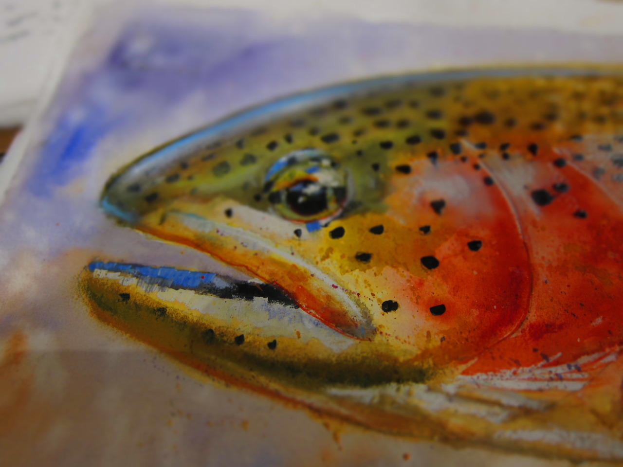 Trout Painting | Jeff Kennedy October 8th, 2011