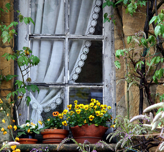 ysvoice:  | ♕ |  French cottage window - Sarlat, Dordogne  | by © Yvan LEMEUR
