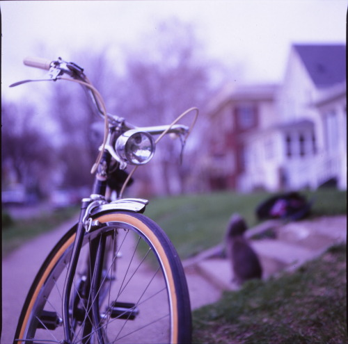 robin hood bicycle and 7 toes the cat   shot with mamiya c220 -ZM