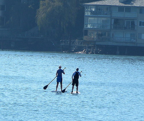 2 paddle boards (by tidalmepix)