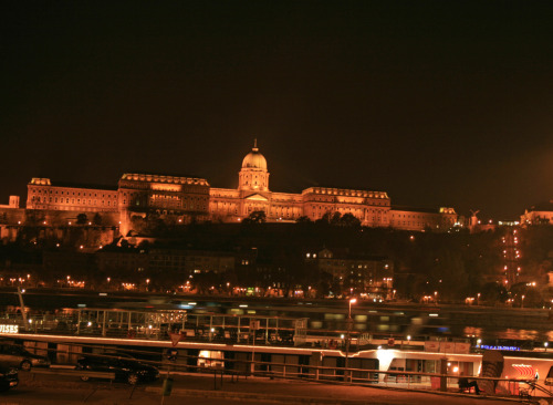 The Budapest Royal Palace.
