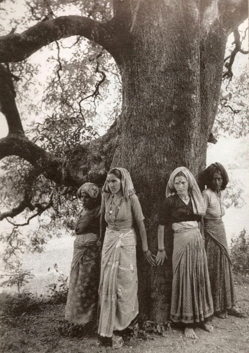 eatlivewear:  Pamela Singh, Chipko Women Hug Tree to Protect it from Being Cut in Northern Uttar Pradesh, 1994