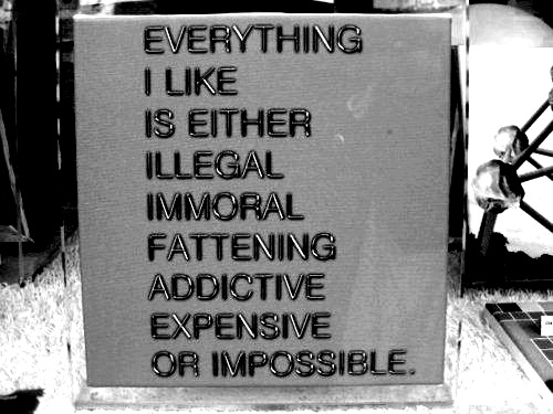 Everything I like makes sick or poor or fat - David Lee Roth