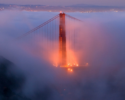 Fogged In by Brad-Miller  [via The Nocturnals]
