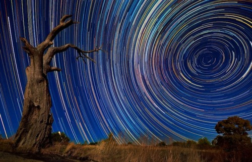 "Extremely long exposure: Photographer endures 15-hour shoots in the wintry Australian outback to snare stunning images of star trails in the night sky Australian photographer Lincoln Harrison's photographs of star trails in  the Australian night sky. These long-exposure shots were taken over the  course of 15 hours! Not only did these shots require a lot of patience  but they also required a great deal of stamina. In order to take these shots, Harrison had to withstand Australia's cold  winter night near Bendigo over Lake Eppalock. Harrison describes his  experience saying, ""It was a grueling night with a total shooting time  was 15 hours in freezing conditions, sunset to sunrise."""