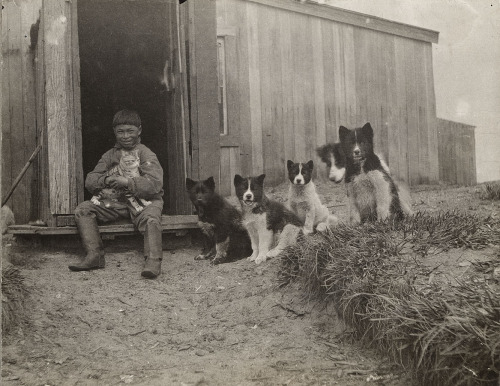 petsincollections:  Eskimo boy with cat and dogs, Alaska, ca. 1905.  Photograph by Suzanne R. Bernardi Jeffery.  Ms. Jeffery was a schoolteacher who worked for many years in Alaska.