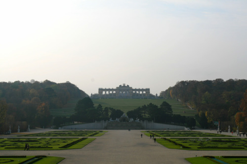 A view up the hill from the back of Schonbrunn palace. Can't get enough of this place.