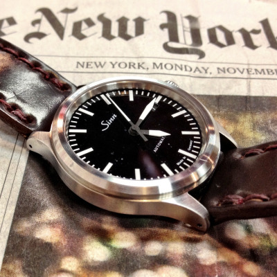 Sinn 556 on Da Luca Color 8 Shell Cordovan Strap