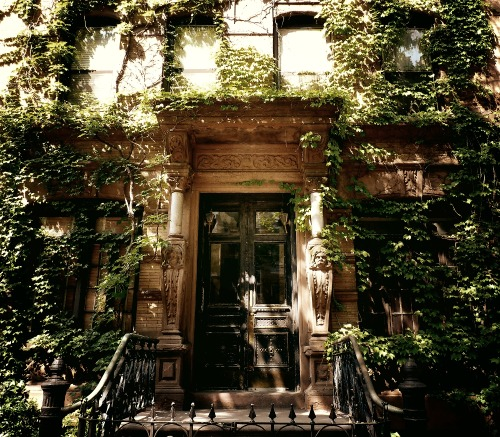 "St. Mark's Place brownstone covered in lush ivy. East Village, New York City.  Before the leaves begin their gravity-fettered migration to the ground, the sun engages in one last embrace with the foliage ensconced shadows.  In these sun-soaked shadows, the leaves shiver while dreaming of winter's frigid kiss waltzing slowly with the ominous brisk breeze before they are swept off their branches like young lovers swept off their feet by the newness of each other.     —-  View this photo larger and on black on my Google Plus page  —-  Buy ""Ensconced - East Village - New York City"" Posters and Prints here, View my store, email me, or ask for help."