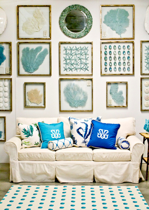 Love the ocean themed wall display of starfish, sea fans, and beach glass above the sofa (via House of Turquoise)
