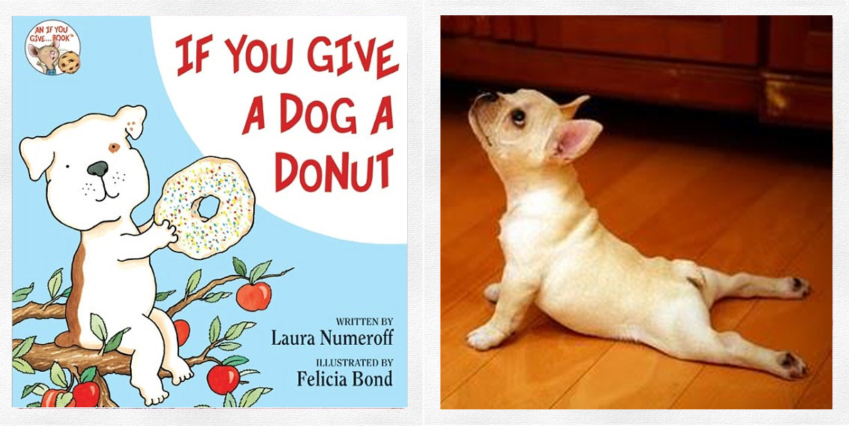 ADORE YOUR PET? Share them in HarperCollins Children's Books Pet Photo Contest for a chance to WIN a signed copy of  IF YOU GIVE A DOG A DONUT by Laura Numeroff (and a