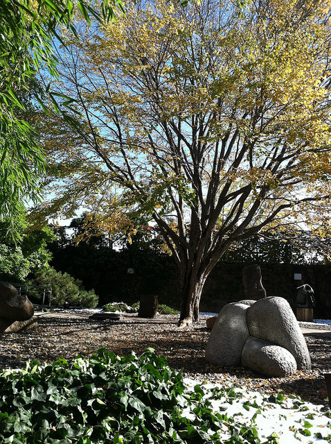 Japanese garden at Noguchi Museum on Flickr.