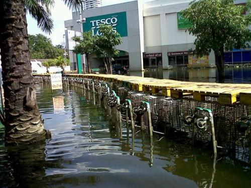 Shopping Cart Bridge
