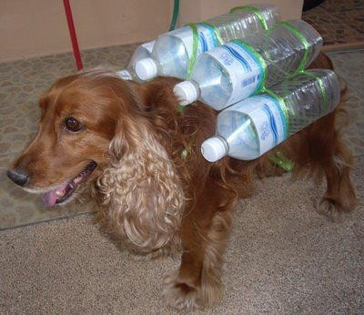 Dog swimming vest made of bottles