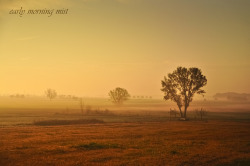 early morning mist [explore #14] by Mi Ko on Flickr.