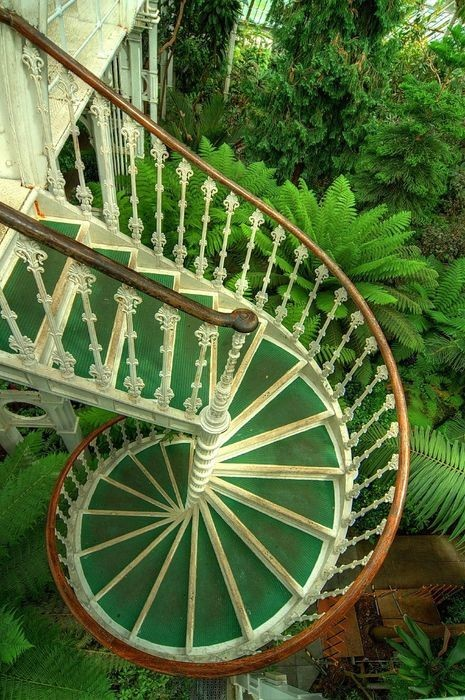 A metal spiral staircase with a fleur-de-lis balustrade winds down into lush gardens inside this conservatory in Kew Gardens, London (via Stairway to Heaven)