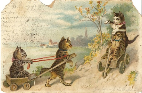 This is what society should look like. German postcard from 1901