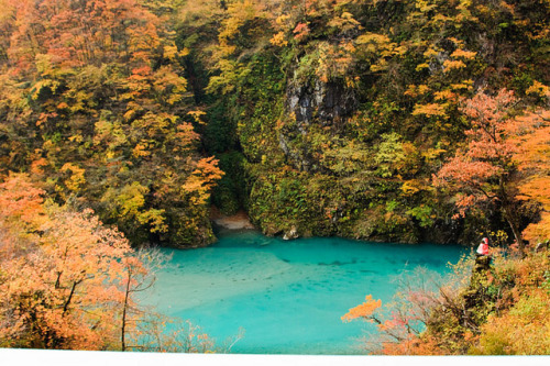 kartobot:  Kurobe_Gorge_05 by GGourdé (crazy busy) on Flickr.  Miss this place like crazy…